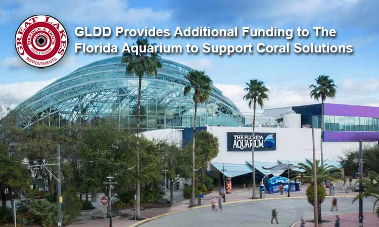 Great Lakes Provides Additional Funding to The Florida Aquarium to Support Coral Solutions